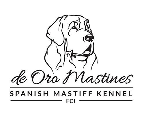 Hodowla Mastifa Hiszpańskiego de Oro Mastines